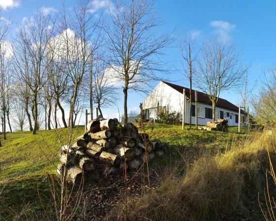 Zandhof